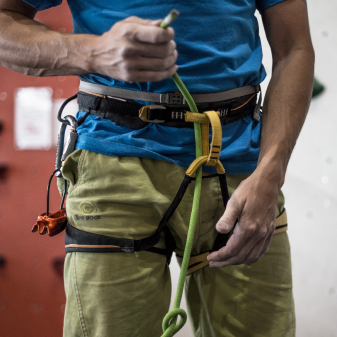 How to Choose THE RIGHT Harness