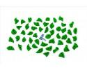 Footchips Wood eXcite - Leaf-green